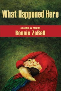 What_Happened_Here_cover