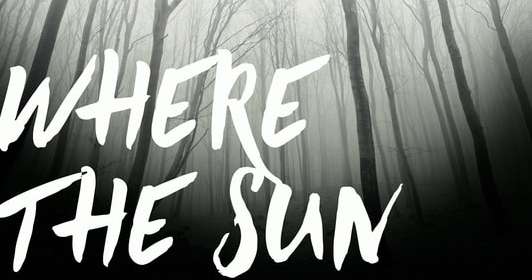 If My Book: Where the Sun Shines Out by Kevin Catalano