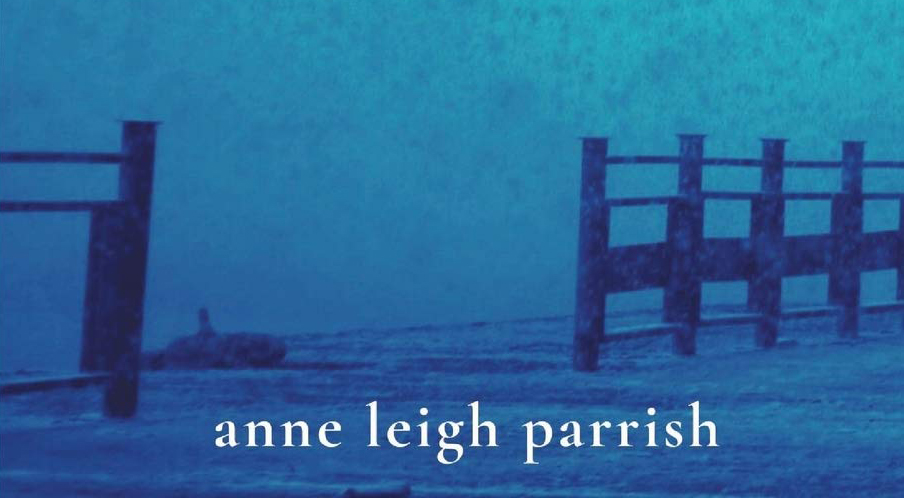 IF MY BOOK: A Winter Night, Anne Leigh Parrish – MONKEYBICYCLE